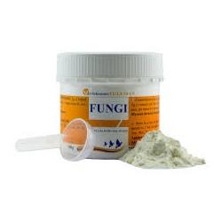 Tollisan Fungi Powder 100gr