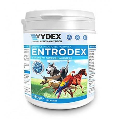 Entrodex Probiotic 650gr