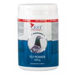 FLY POWER